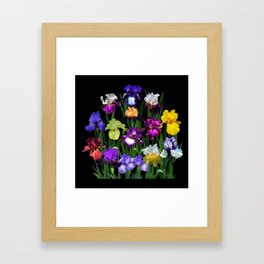 Iris Garden - on black Framed Art Print