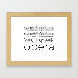 I speak opera (buffo bass) Framed Art Print
