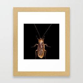 Bedazzled Roach Framed Art Print