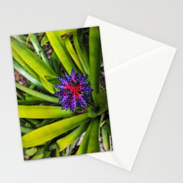 Misplaced Beauty Stationery Cards
