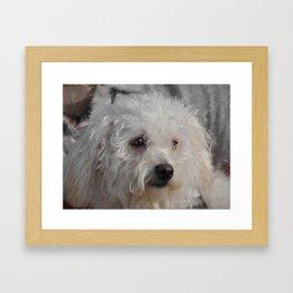 White Puppy Framed Art Print