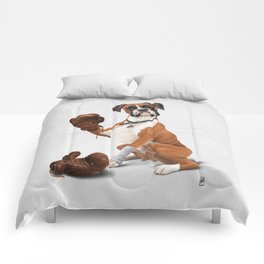 The Boxer (Wordless) Comforters