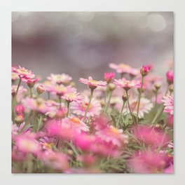 Dreaming of Flowers Canvas Print