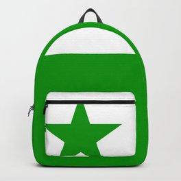 Flag of Esperanto 2 Backpack