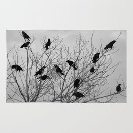 Murder Of Crows - Two Rug