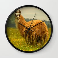 llama Wall Clocks featuring Llama by Nature In Art...
