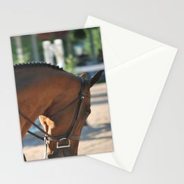 Horse Park 174 Stationery Cards