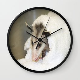 Rescued baby Opossum Wall Clock