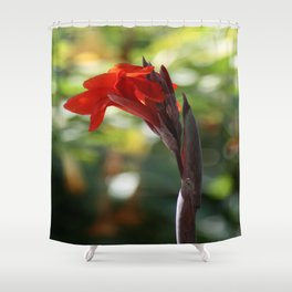 Red Canna Lily Shower Curtain