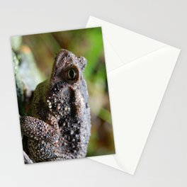 Living Stone Stationery Cards