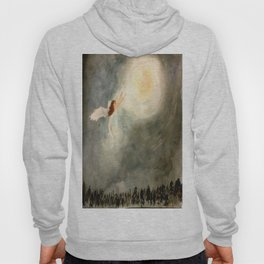 Snow Fairy Hoody