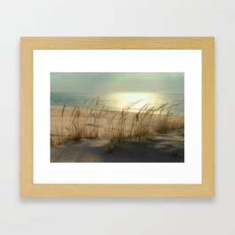 Sun Dappled Beachscape Framed Art Print