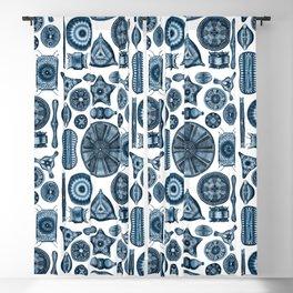 Ernst Haeckel Diatomea Diatoms in Navy Blue Blackout Curtain