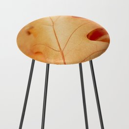 AFE Autumn Leaves, Nature Photography Counter Stool