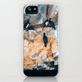 Biontro I iPhone Case