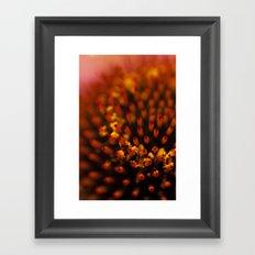 Red Petals with Pollen Framed Art Print