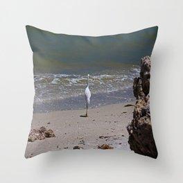 A Sanibel Dance Throw Pillow