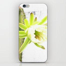 Spiky Delight iPhone Skin