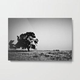 Field Of Empty Dreams Metal Print