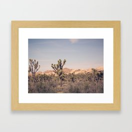 Scenes from Joshua Tree, No. 2 Framed Art Print