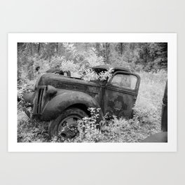 Rusting Pickup with Tree Grown in Cab Black and White Infrared Art Print