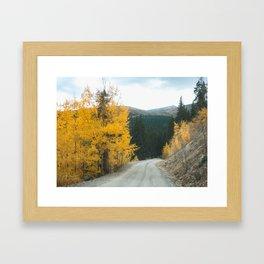 Yellow Leaf Road Framed Art Print