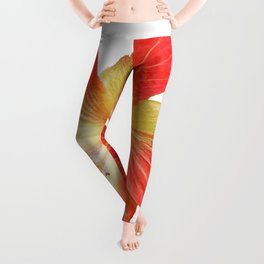 Gorgeous Red And Gold Hawaiian Hibiscus Flower No Text Leggings