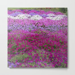 Waves of color on a sea of Petunias Metal Print