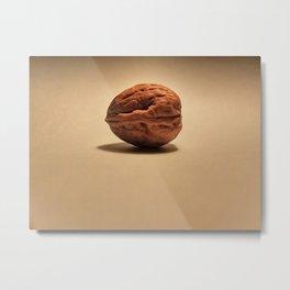Walnut Metal Print