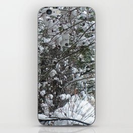 Snow Wishes iPhone Skin