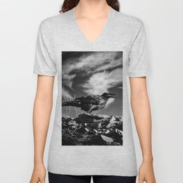 Raven and Clouds Unisex V-Neck