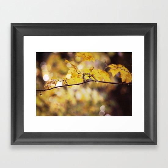 Amber Droplets Framed Art Print