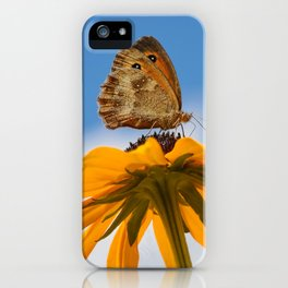 Butterfly on a yellow flower iPhone Case