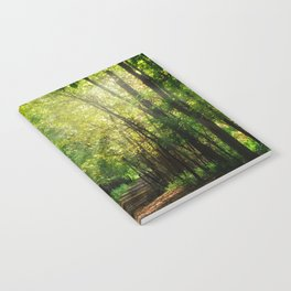 Fall Splendor Notebook