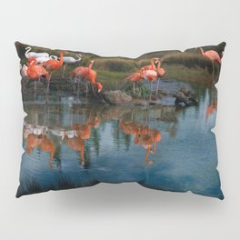 Flamingo Convention Pillow Sham