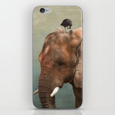 Brotherly- elephant and owl iPhone & iPod Skin