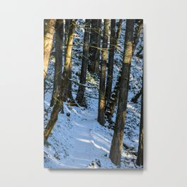 Spencer Butte Trail in Winter Metal Print