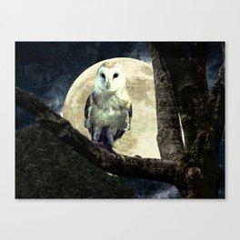 Barn Owl Bird Moon Modern Country Decor Farmhouse Art A497 Canvas Print