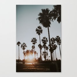 palm trees vi / venice beach, california Canvas Print