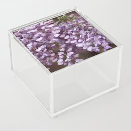 Spring - Wisteria Acrylic Box