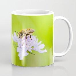 A bee on a flower Coffee Mug