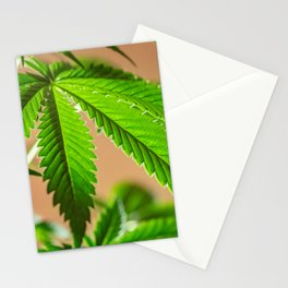 Cloned Stationery Cards