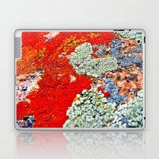 Likin' This Lichen Laptop & iPad Skin