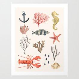 Sealife Schoolchart Art Print