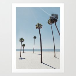 Palm trees 7 Art Print