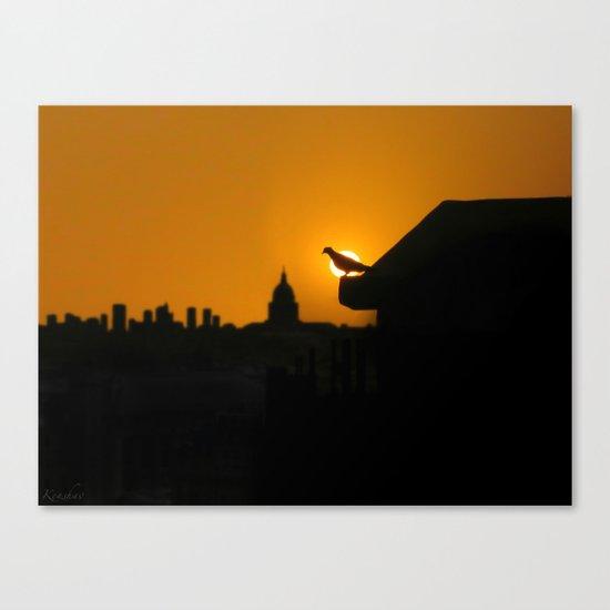 Pigeon Eclipse2 Canvas Print