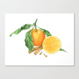 Tangerines and spices Canvas Print