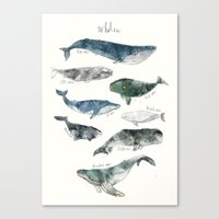 shower Canvas Prints featuring Whales by Amy Hamilton
