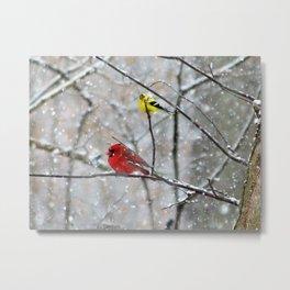 Goldfinch and Cardinal Metal Print