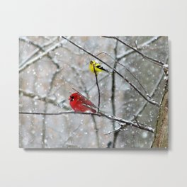 Goldfinch and Cardinal Metal Print